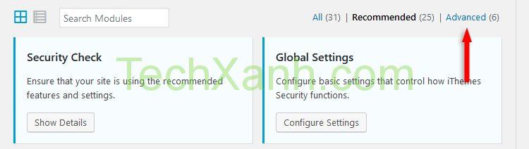 ithemes security advanced settings